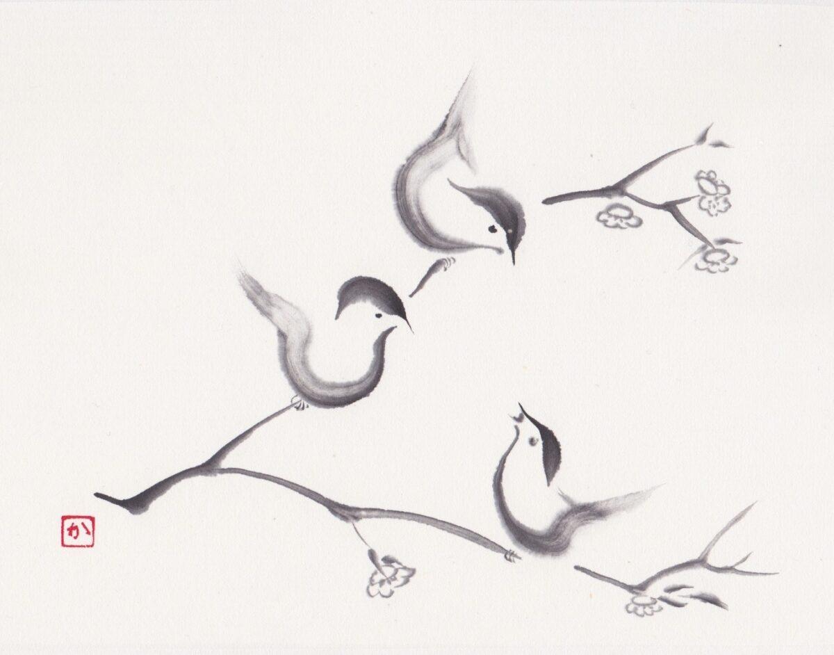Vogeltjes Ws Sieboldhuis
