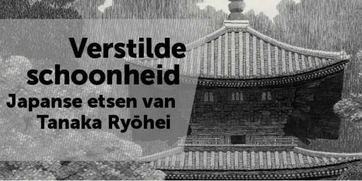 Banner Verstilde Schoonheid